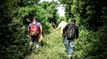 Desaparición, migracion y desplazamientoForzado