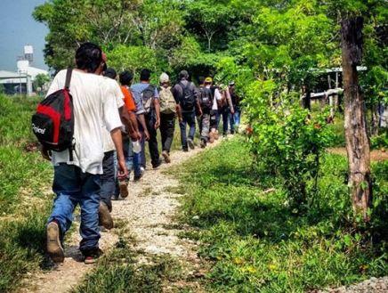El MMM condena criminalización del diputado @MemoTorresL hacia losmigrantes
