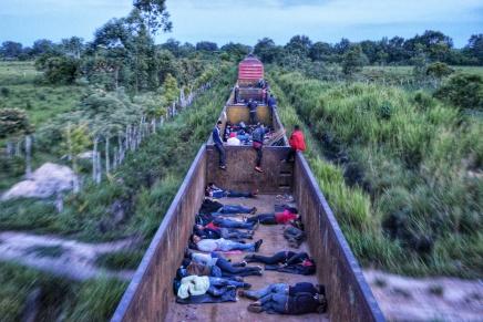 Fotogalería: las personas migrantes que resisten en el lomo de labestia